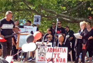 Protesters in New Zealand defend Maori land