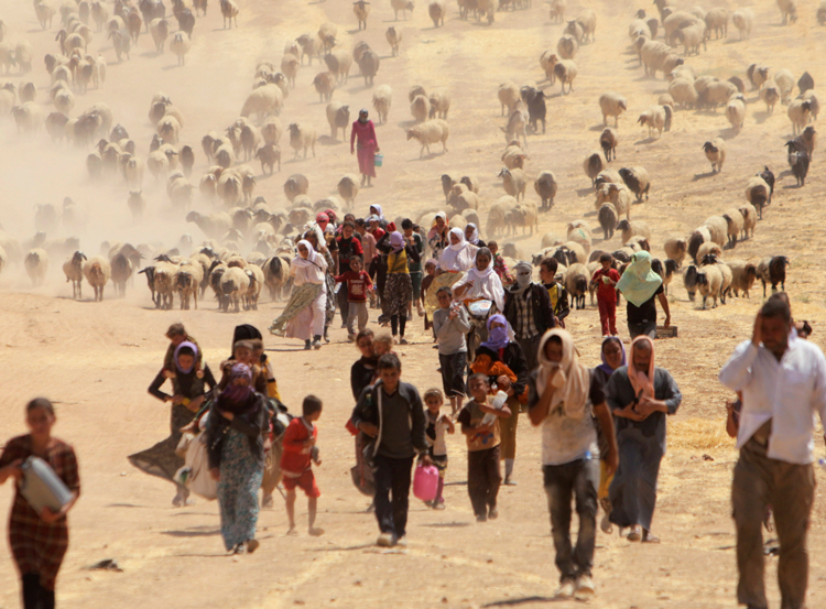 Yazidis flee genocidal attacks by Islamic State forces in Sinjar province in northern Iraq, August 2014. Hundreds were killed, up to 400,000 managed to escape to nearby autonomous Kurdistan region. Since defeat of IS a big majority of those that fled remain dispersed, often in miserable conditions in refugee camps. Neither government of Iraq nor of the Kurdistan region seeks to resolve crisis.