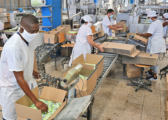 Suchel Camacho soap factory, Havana. Revolutionary government in Cuba is organizing working people to increase food, industrial production in face of world capitalist economic crisis.