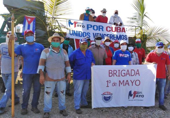 Brigada de trabajo iniciada por sindicalistas en provincia de Camagüey, Cuba. Los voluntarios la nombraron Brigada 1 de Mayo, en honor al desfile anual que no se podrá celebrar esta vez.
