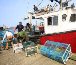 Working fishermen in Canada have been hard hit by world crisis and Ottawa's lobster permit system, which increase competition, class stratification and discrimination against Native fishermen. Fight is needed to defend common interests of all fishermen against the capitalist rulers.