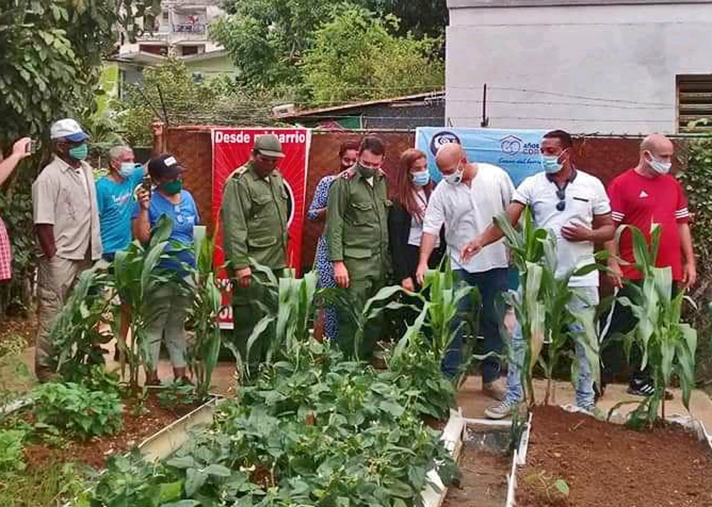 "Committees for the Defense of the Revolution, together with other mass organizations, are organizing working people to increase food production through ""From your neighborhood, plant your little plot"" program. Third from right, Gerardo Hernández, CDR national coordinator."